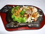 SP15 Chicken Teriyaki